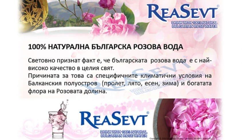 //vesselino.com/wp-content/uploads/2017/12/reabg5.jpg