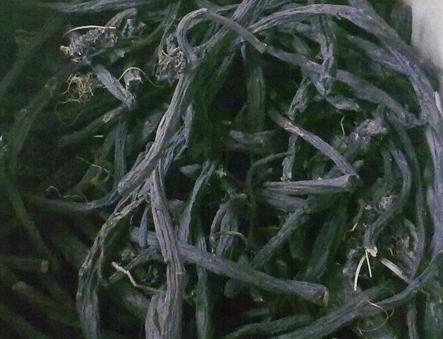 //vesselino.com/wp-content/uploads/2019/11/Sypfitum-Officinalis-radix2.jpg